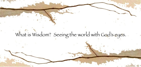 What is wisdom? Seeing the world with God's eyes.
