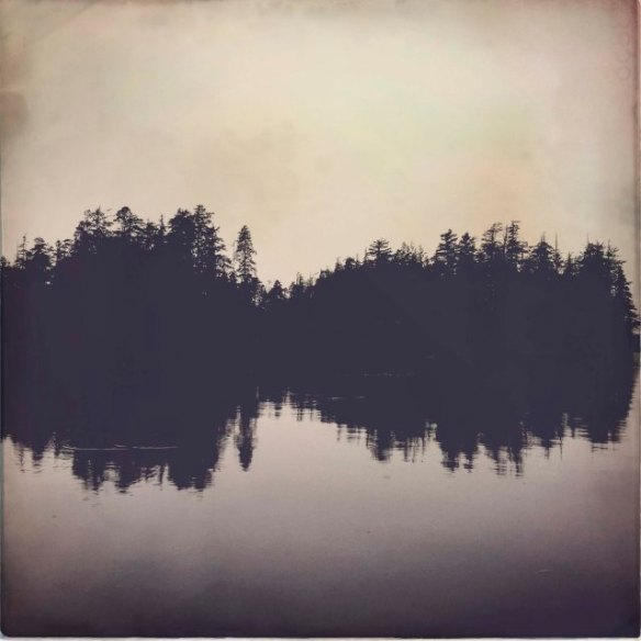 like music - trees reflected on a lake leave the impression of sound waves